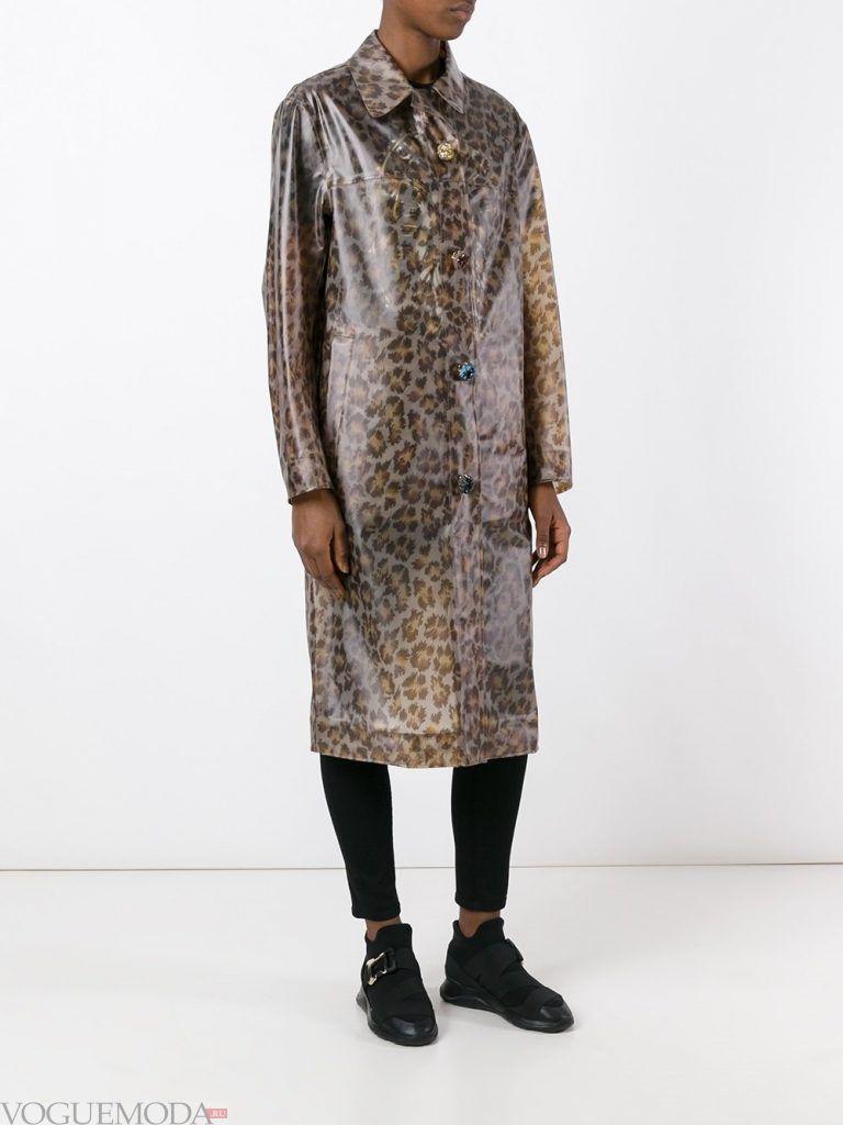 дождевик леопардовый