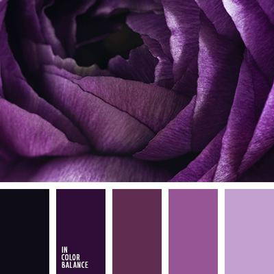 фиолетовая палитра цветов