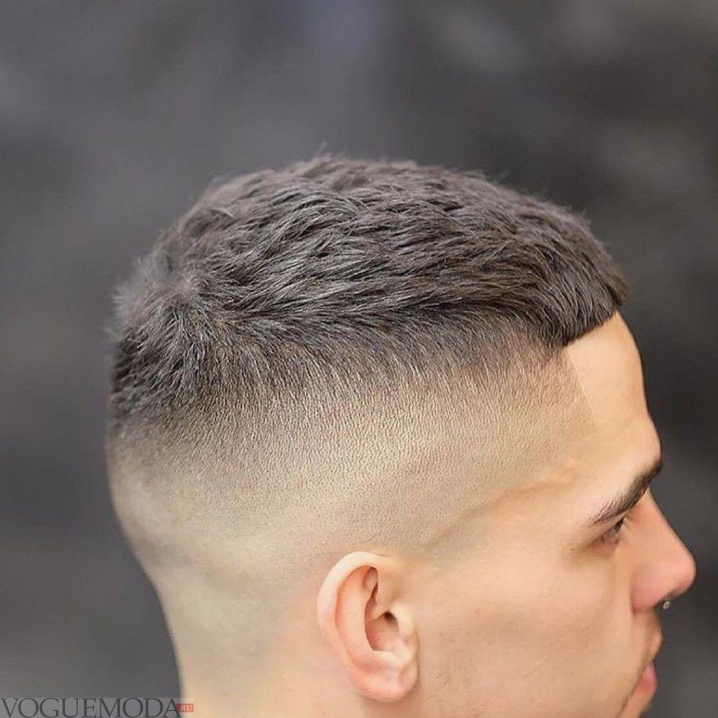 мужская стрижка «Принстон» для брюнетов